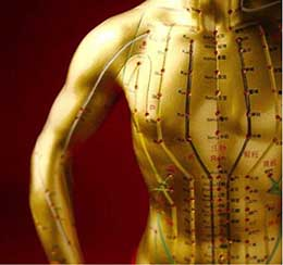 FightingArts com - Acupuncture Points Verified with New